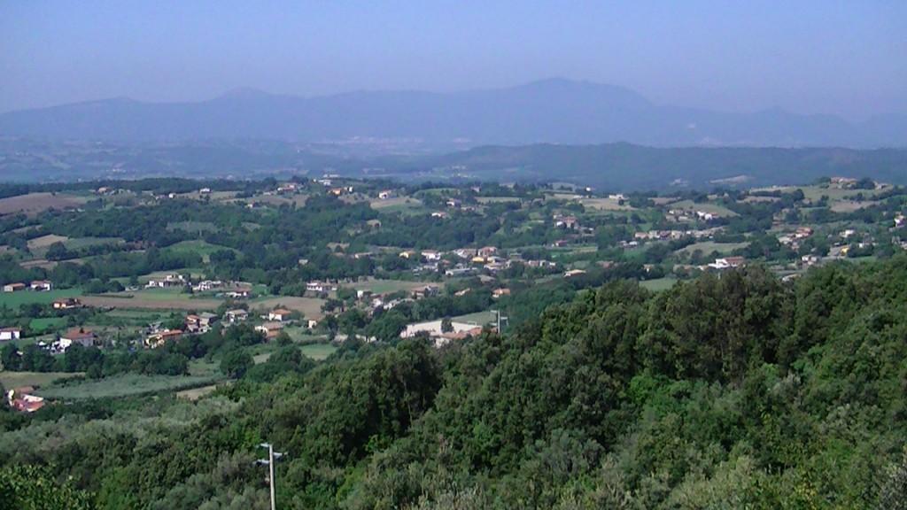 local views 3